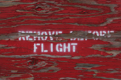 Remove before flight !