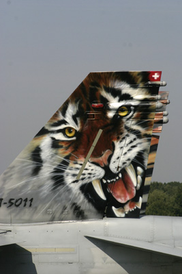 Swiss Hornet Tiger Tail Art
