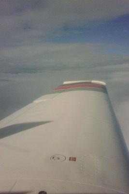 Wing catchin sun